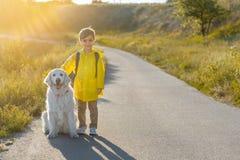 Positives Kind, das in Natur mit Labrador-Welpen reist Lizenzfreie Stockfotos