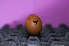Positivt ägg royaltyfri foto