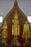 Posizione del Buddha Fotografie Stock