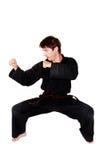 Posizione di arti marziali Immagine Stock