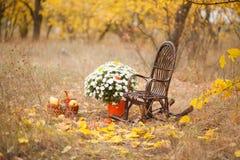 Posizione di autunno, decorazione di autunno, sedie Fotografia Stock Libera da Diritti