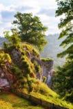 Posizione di vantaggio di Burg Falkenstein sopra il fiume di Brenz Fotografia Stock Libera da Diritti