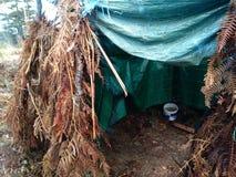 Posizione stazionaria di un cacciatore nella capanna della foresta invasa con le erbacce per cammuffare nella caccia fotografia stock
