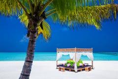 Posizione tropicale di cerimonia di nozze Palma e del cielo blu Fotografie Stock