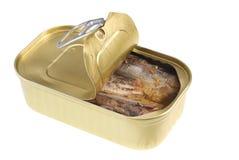 Possa dei pesci Fotografia Stock