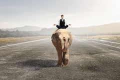 He possesses animal strength and power . Mixed media. Businessman in lotus pose riding on elephant. Mixed media Royalty Free Stock Image