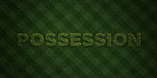 POSSESSION - fresh Grass letters with flowers and dandelions - 3D rendered royalty free stock image Royalty Free Stock Photos