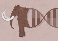 Possibilità di biologia o della clonazione di resurrezione Sarà possibile creare un organismo, che era specie estinte royalty illustrazione gratis