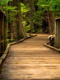 Posso eu interessar qualquer um em uma caminhada de Serentity? imagens de stock royalty free