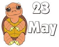 23 possono festa della tartaruga illustrazione vettoriale