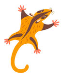 Possum. Flat cartoon vector illustration Stock Photography