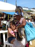 Possum Vendor Royalty Free Stock Photos