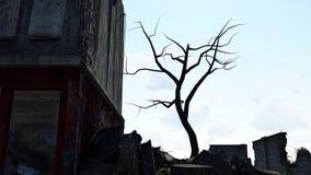 Post-apocalyptic landscape Stock Image