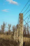 Post with barbed wire against the sky Royalty Free Stock Images