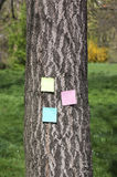 Post it on bark tree Royalty Free Stock Photos