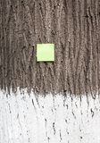 Post it on bark tree - RAW format Stock Image
