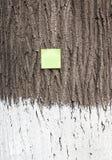 Post it on bark tree - RAW format stock image