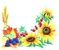 Post card of autumn season from gardens Royalty Free Stock Photos