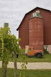 A post covered with grape vines is in front of an old truck parked by a silo and hip roofed red barn. Royalty Free Stock Photos