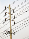 Post electric, detail with bird, transport energy Royalty Free Stock Photography