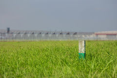 A post among the green grass Stock Photography