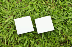 Post-it note. On green grass Royalty Free Stock Photo