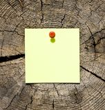 Post-it note on tree trunk. Yellow post-it note attached with red pin to weathered tree trunk section Royalty Free Stock Photos
