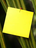 Post-it outdoor Stock Photo