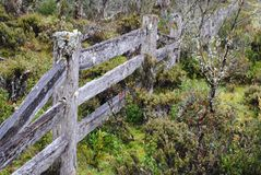 Post and rail fence. An old post and rail fence at Craddle Mountain in Royalty Free Stock Photos