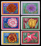 Post stamp. Flowers Stock Photos