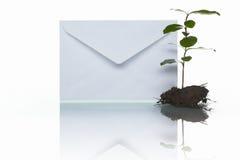 Post und Grünpflanze Stockfoto