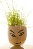 postać z trawą na jego głowie Zdjęcia Stock