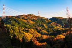 Posta ad alta tensione di elettricità sopra la foresta variopinta sulla montagna Immagini Stock