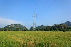 Posta di elettricità nel giacimento del riso Fotografia Stock Libera da Diritti