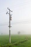 Posta di elettricità nelle risaie Fotografie Stock