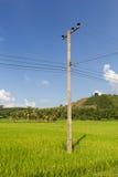 Posta di elettricità sul fondo del cielo blu Fotografia Stock Libera da Diritti