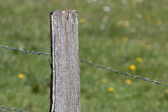 Posta di legno Fotografia Stock Libera da Diritti