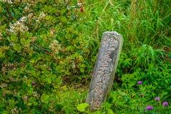 Posta di pietra in mezzo ad un campo invaso Fotografia Stock