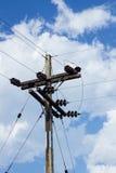 Posta elettrica dalla strada con la linea elettrica cavi, contro il blu Fotografia Stock