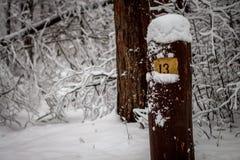Posta per l'orientamento nella foresta con il numero 13 fotografia stock