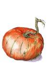 Postaci pomarańcze bania Obrazy Royalty Free