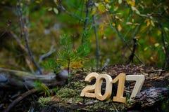 Postacie 2017 na starym fiszorku w drewnach C Obraz Stock