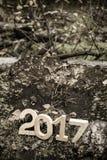 Postacie 2017 na starym fiszorku w drewnach kiedy było tła może święta temat ilustracyjny użyć Shal Obrazy Stock