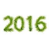 Postacie od jedlinowych gałąź 2016 Zdjęcia Royalty Free