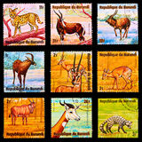 Postage stamp Royalty Free Stock Images