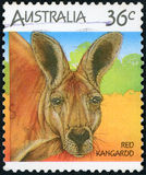Postage stamp. Australia - Red kangaroo stock photos