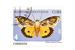 Postage stamp butterfly Royalty Free Stock Images