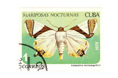 Postage stamp butterfly closeup Royalty Free Stock Photo