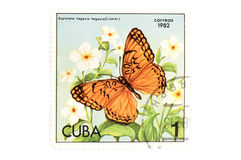 Postage stamp butterfly on white. Object on white - Cuban postage stamp Stock Photography