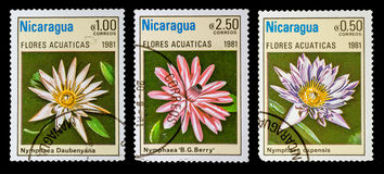 The Postage Stamp. DZERZHINSK, RUSSIA - FEBRUARY 11, 2016: Set of a postage stamp of NICARAGUA shows flowers, circa 1981 Stock Images
